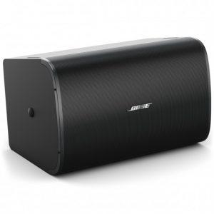Loa treo tường Bose DesignMax DM10S-SUB